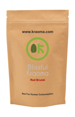 Blissful Kraoma (Red Brunei)