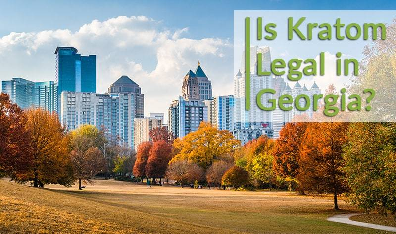 is kratom legal in georgia